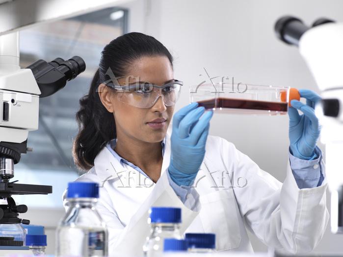 Biomedical Research, female sc・・・