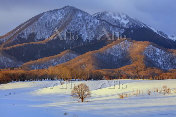 岡山県 夕日に染まる雪の蒜山高原と二俣山とアゼチ