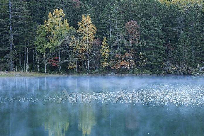 北海道 朝靄の紅葉のオンネトー