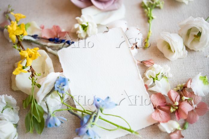 Still life of blank paper note・・・