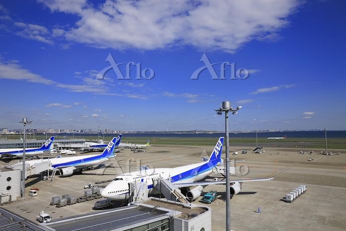 東京都 羽田空港第2ターミナルの飛行機と都心のビル群
