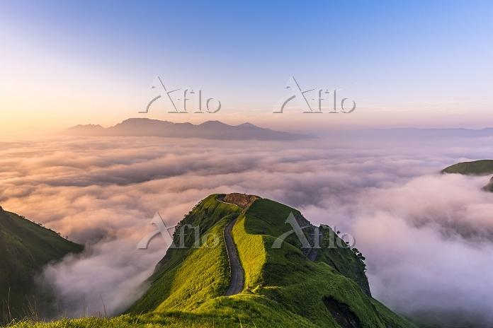 熊本県 雲海の天空の道と阿蘇山