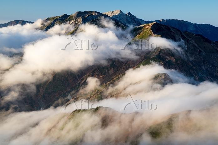 長野県 富山県 北アルプス 五竜岳より唐松岳と白馬岳