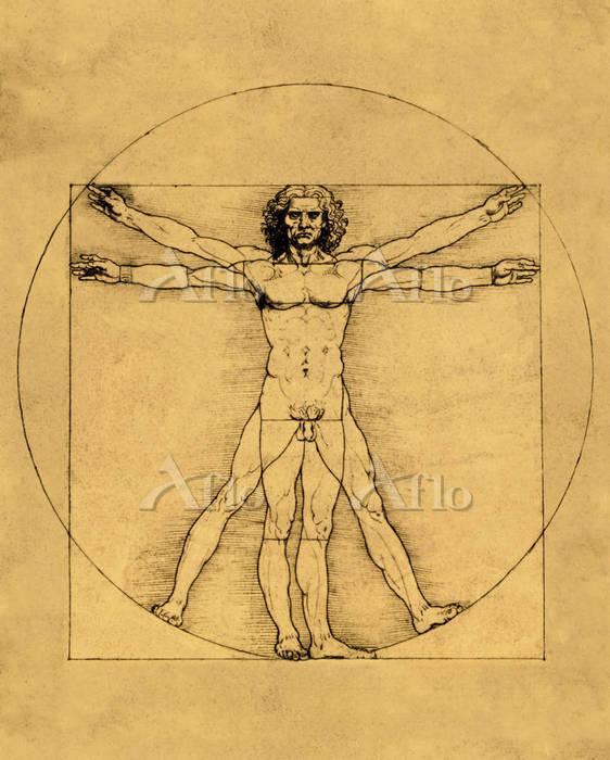 レオナルド・ダ・ヴィンチ  「人体均衡図(ウィトルウィウス的・・・