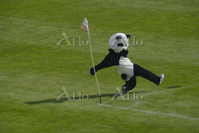 蹴る 楽しい サッカー