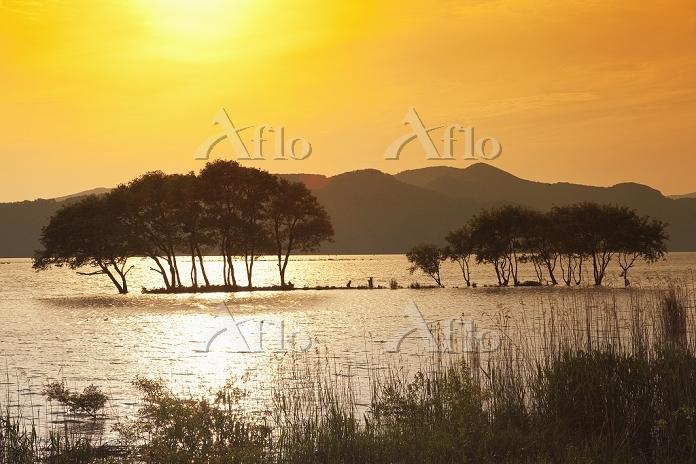 滋賀県 琵琶湖 夕景