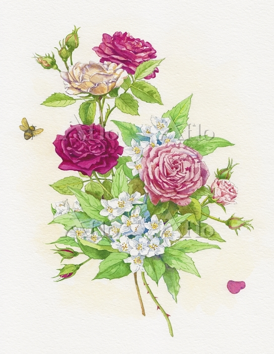 Bunch of roses and mock orange・・・