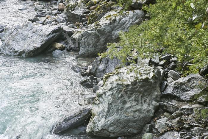 荒川上流部にみられる岩石の様子(30cmものさし)