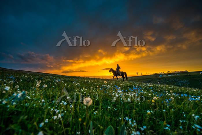 中国 新疆ウイグル自治区 乗馬