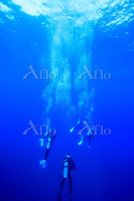 夏の青い海に潜るダイバー