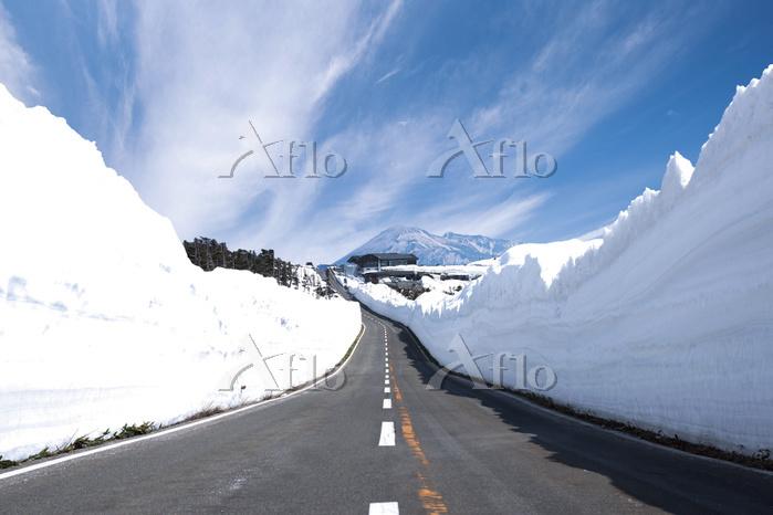 岩手県 八幡平アスピーテライン 雪の回廊