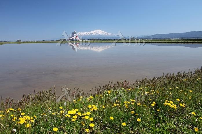 田植え前の水田と鳥海山 2014.05.11 山形県 庄内町
