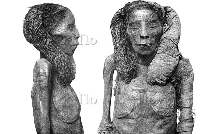 エジプト 女性のミイラ
