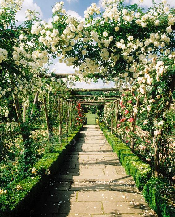 イギリス イングリッシュ・ガーデン