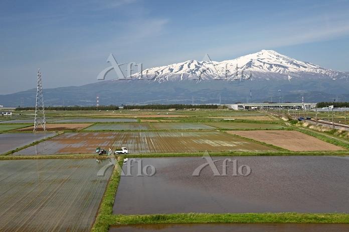 庄内平野の米作り 水田と鳥海山 2014.05.11 山形県・・・