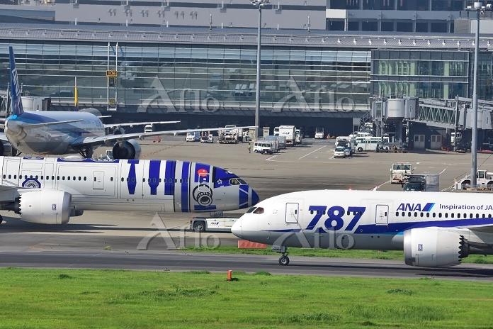 羽田空港 ANA B787-8 B787-9