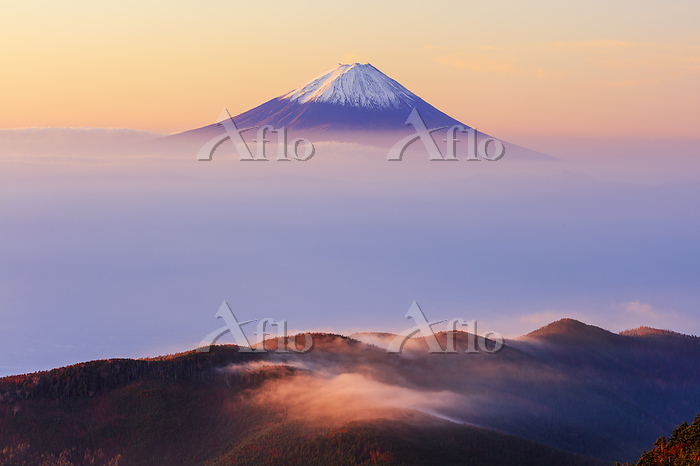 山梨県 国師ヶ岳より雲海と富士山朝景
