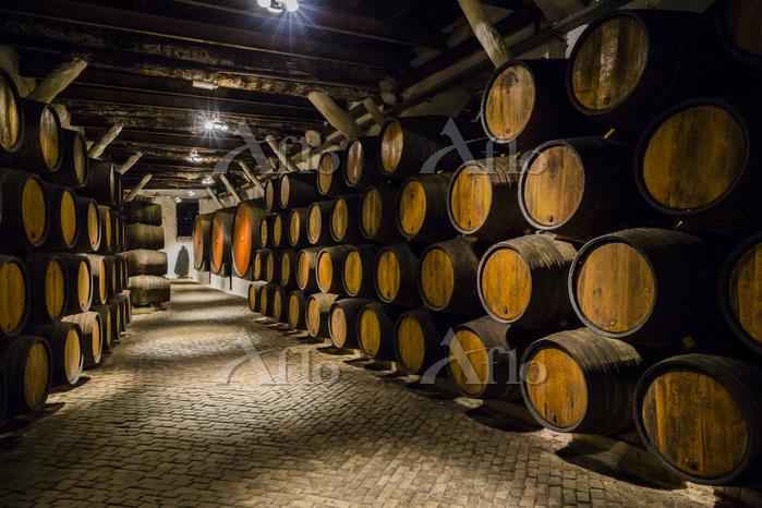 ポルトガル ポルト ワイン工場