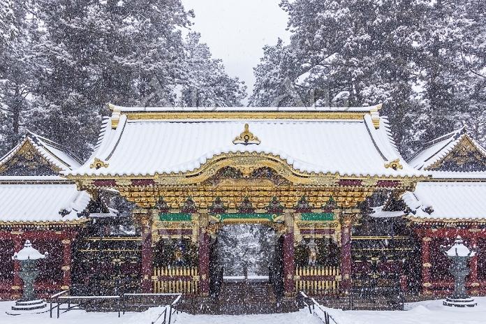 栃木県 大猷院 夜叉門