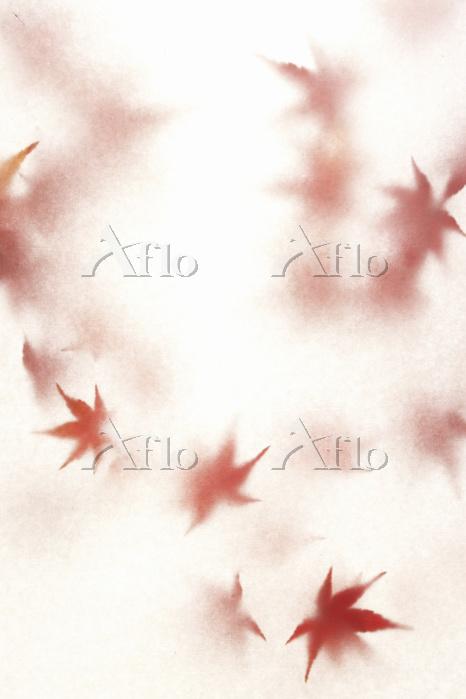 モミジの葉と和紙