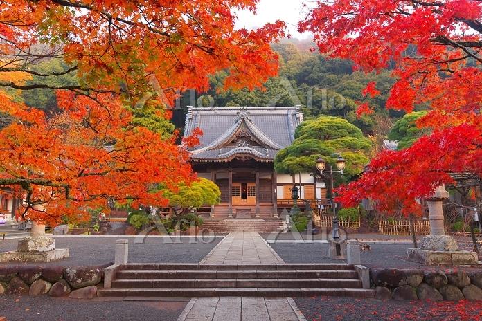 静岡県 紅葉の修禅寺