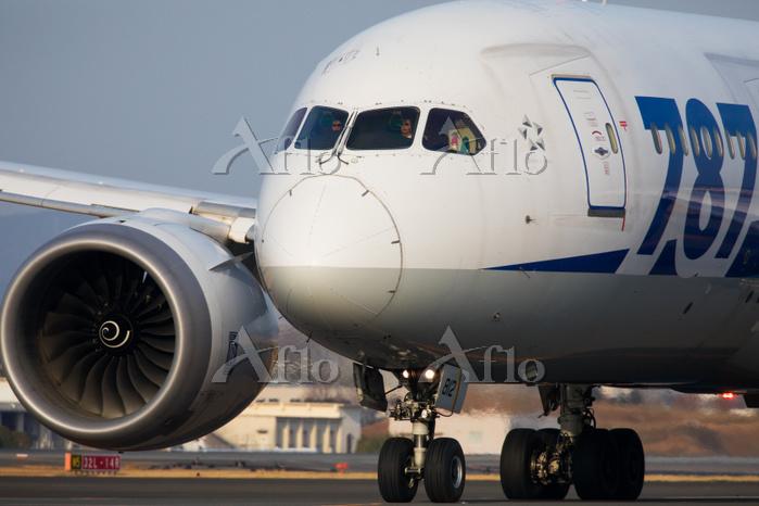 大阪府 伊丹空港 ボーイング787-8 Dreamliner