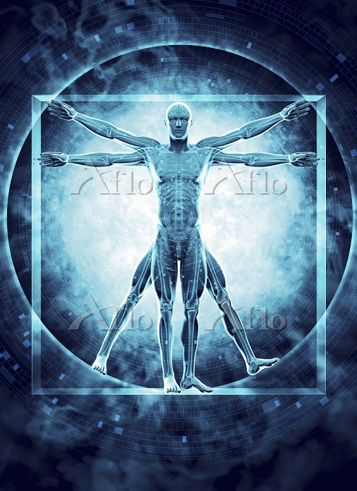 Futuristic transparent Vitruvi・・・