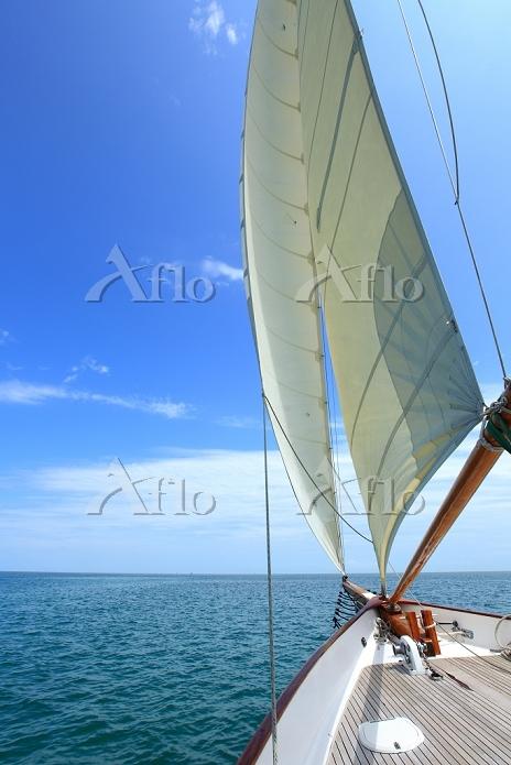 帆船の船首