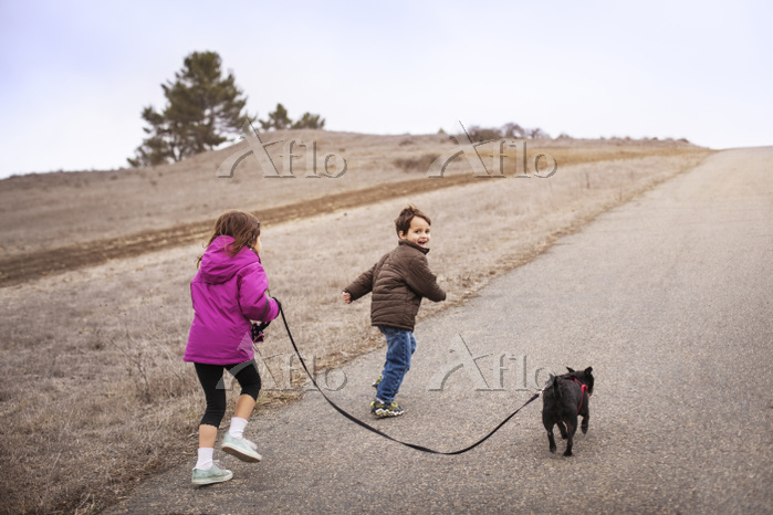 Sibling with dog running on ro・・・