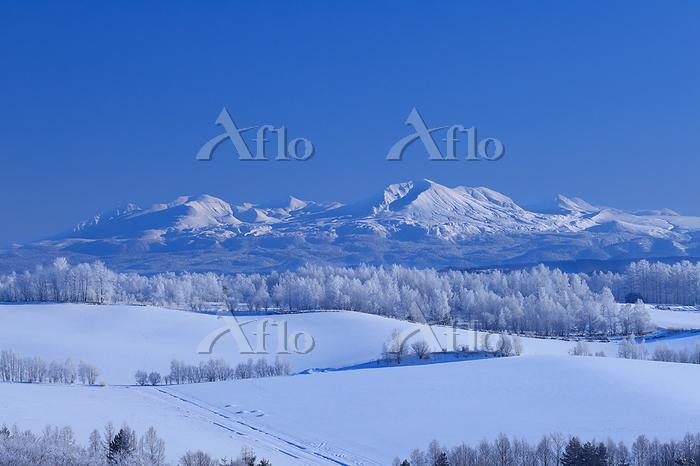 北海道 霧氷の丘陵地と大雪山