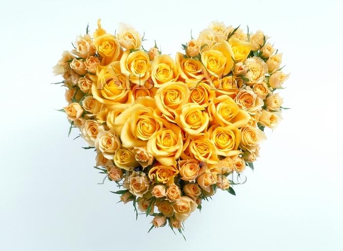 ハート型にアレンジしたバラ
