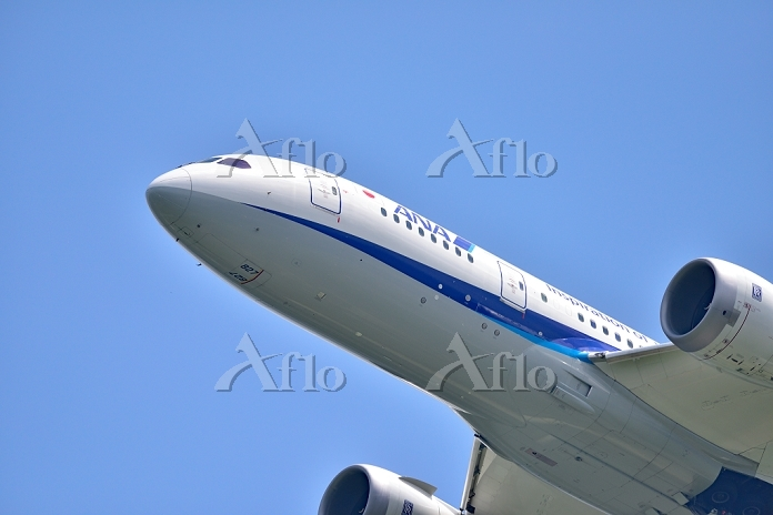 ANA B787-8 Dreamliner