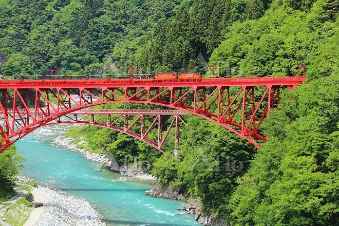 富山県 初夏の黒部峡谷 トロッコ電車