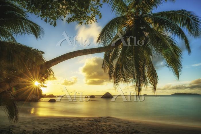 セーシェル リゾートビーチ 夏の夕暮れ