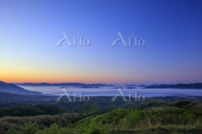 岡山県 蒜山高原の雲海の黎明