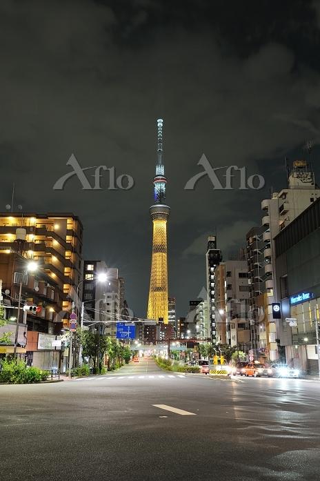 東京スカイツリー 特別点灯「2020東京オリンピックへ」