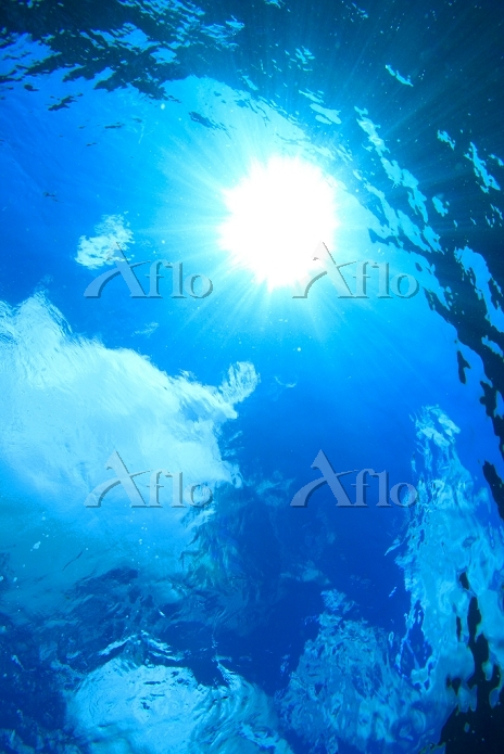 青い海と光