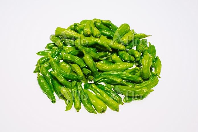 野菜 シシトウガラシ