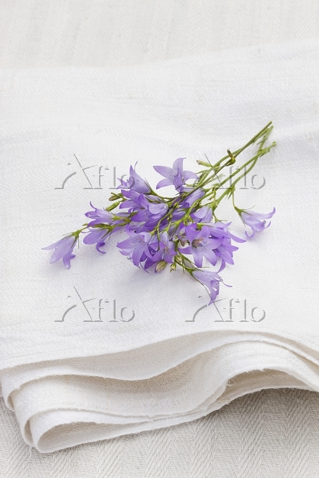 Rampion flowers on a linen clo・・・