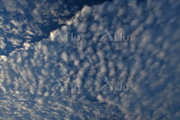 青森県 波状高積雲 竜泊ラインから