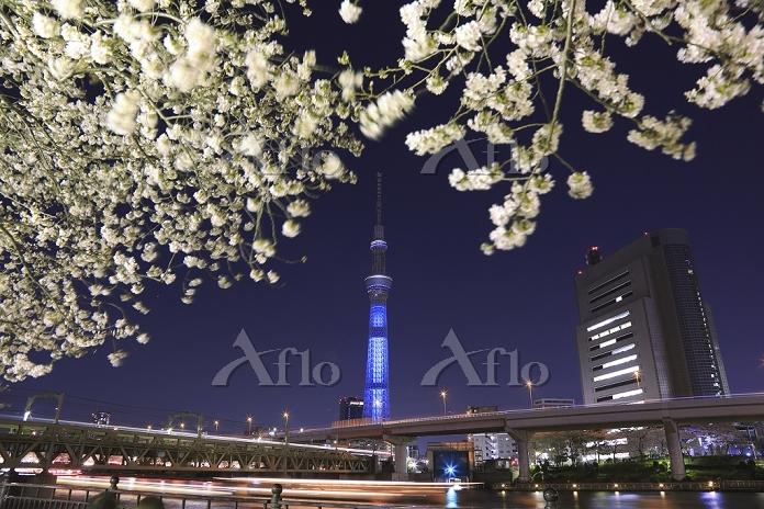 東京都 東京スカイツリーのテストライトアップ(12/4/9)