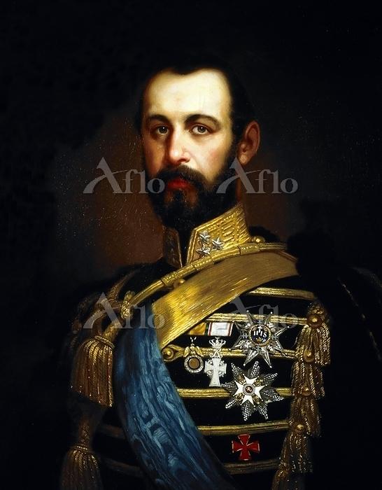 カール15世の肖像