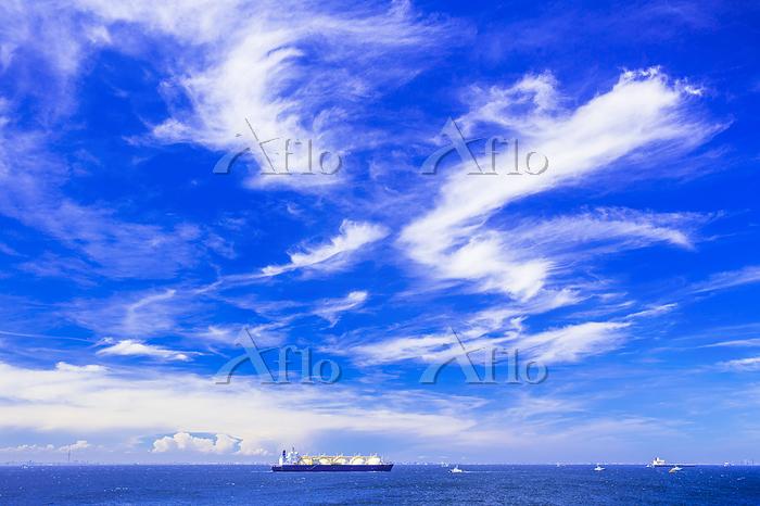 千葉県 青空の東京湾とLPG船