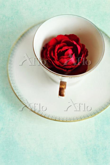 ティーカップの中のバラ