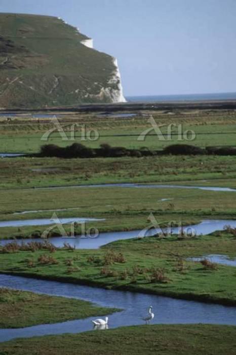 View of meandering waterways i・・・