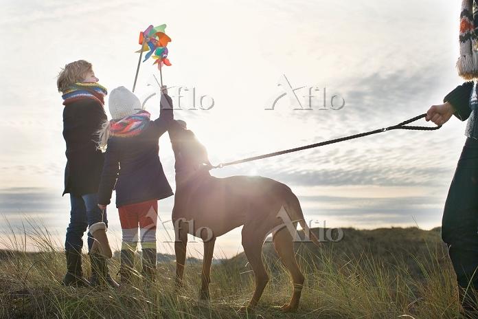 風車を持つ子供と犬