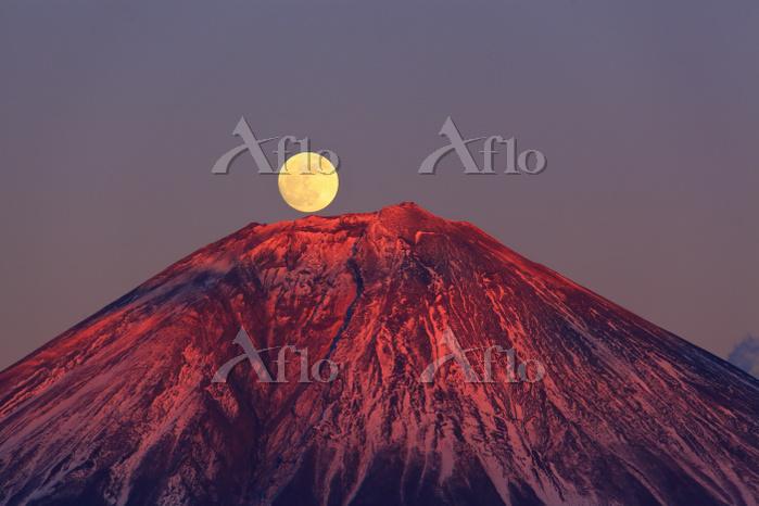 山梨県 思親山より望む正月元旦の紅富士と昇る月