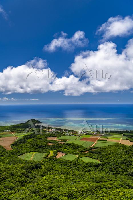 沖縄県 野底岳から見た野底崎