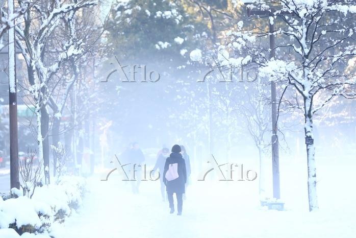 都心降雪後出動する人々