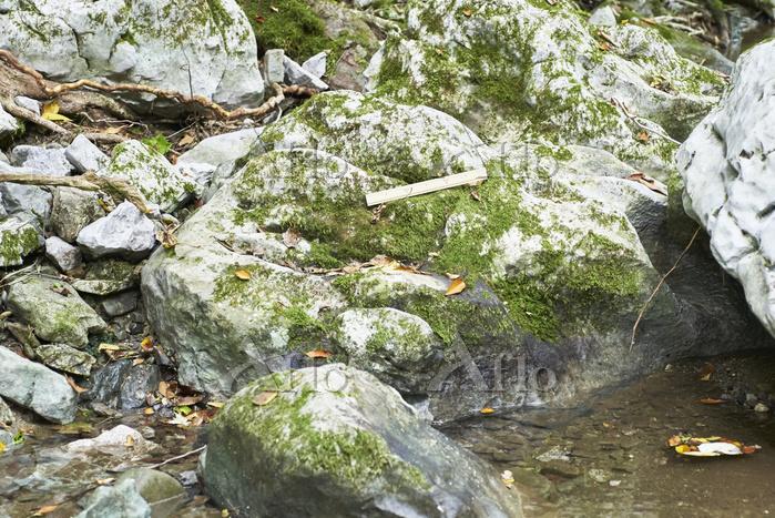 流れる水の働き/川の様子 - 高知・四万十川 上流・山の中に・・・